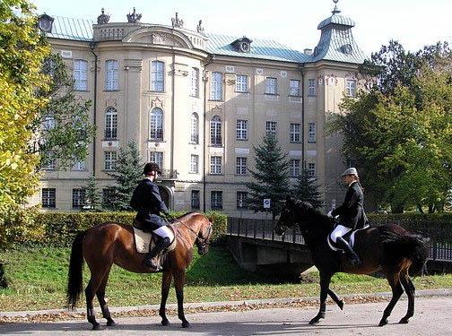 MICE и инсентив в Познани (Польша)